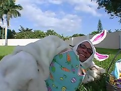 Assparade. Easter Bunny Fever